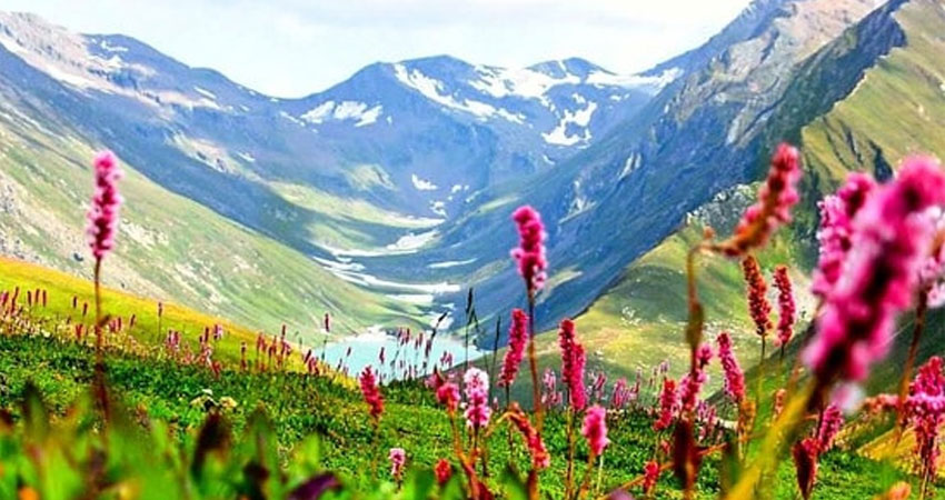 /Valley of Flowers Trek2