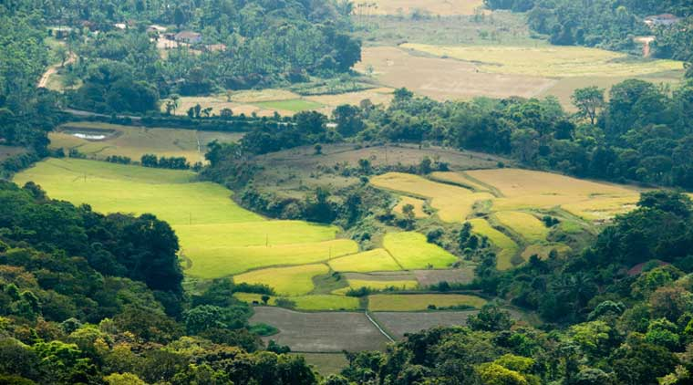 Car Rental For Bangalore Mysore Ooty Coorg