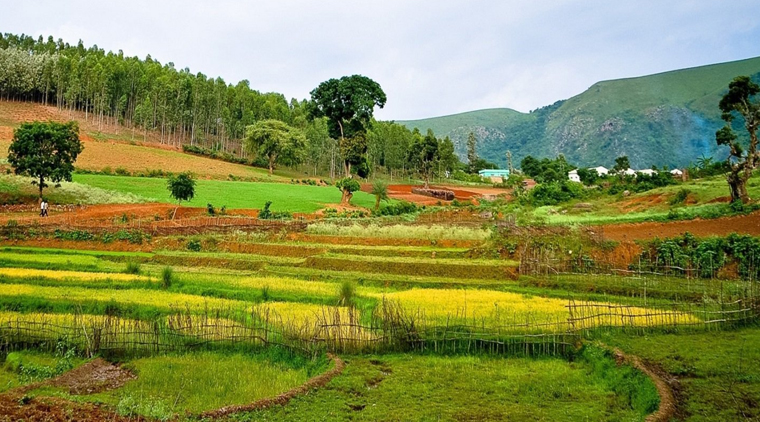 Hyderabad to Araku Tour Packages
