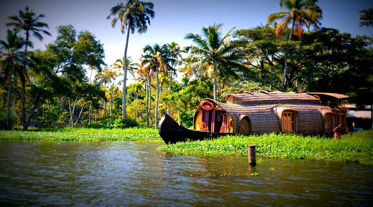 Kerala Trip Honeymoon Package