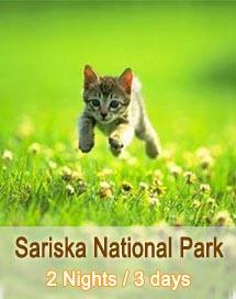 Sariska National Park Tour