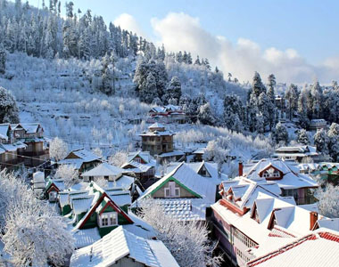 Shimla Tour Package from Delhi for Couples