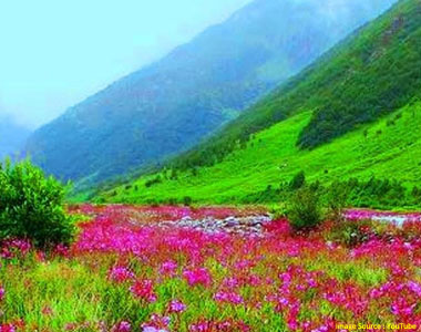Valley of Flowers Uttarakhand Package