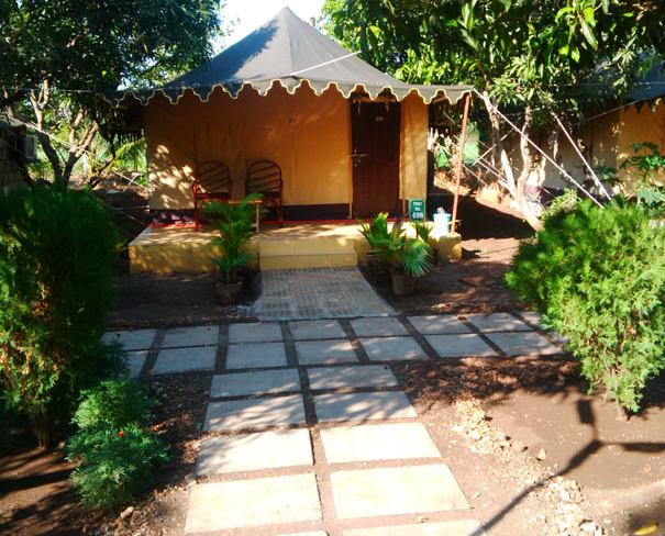 Gir Jungle Lodge-Sasan Gir