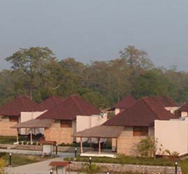 Musa Jungle Retreat-Manas